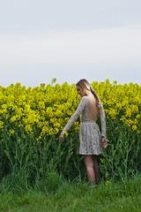 lente (Wim Vandenbussche) Tags: flowers sun spring warmth fresh lente zon bloemen koud warmte fris