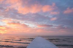 Frosty dock (Infomastern) Tags: winter cold vinter frost rime rimfrost kallt skateholm