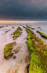 Between the Lines (IrreBerenTe Natalia Aguado) Tags: longexposure sunset seascape green beach lines marina rocks cantabria sanvicentedelabarquera irreberentenatalia springcoast