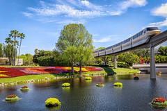 Gold (patchrick84) Tags: gold epcot florida transportation monorail waltdisneyworld themepark flowerandgardenfestival