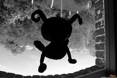 My Friend Heartless (SkyferPhoto) Tags: shadow blackandwhite bw nerd window dark levitation kingdomhearts heartless