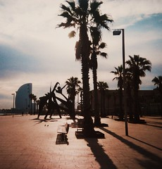 Shadow & Silhouette (teaselbrush) Tags: shot film camera toy superheadz slim white angel widescreen wide angle glitch blur photography barcelona spain urban city sun beach seafront promenade sea ocean vignetting shadow silhouette sculpture modern statue geometric angles shapes palm tree