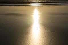 sunset (krllx) Tags: ocean africa light sunset sea beach water lights sand sundown morocco essaouira marokko solnedgang dsc03737201603071