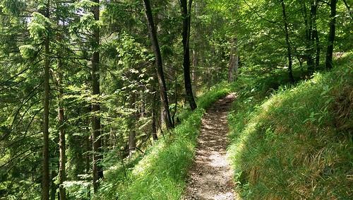 Wanderung zum Alatsee