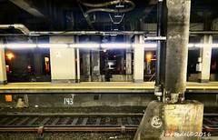GCT (MROEDEL) Tags: roedel madridminer train nyc newyorkcity gct grandcentralterminal station tracks underground steel concrete dark noflash platform