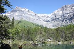 Derborence, Valais, petit lac forestier (luka116) Tags: montagne juin suisse paysage valais 2016 derborence