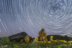 Dirfys startrails...some planes and a satellite (t.valilas) Tags: trees sky nature stars outdoor greece startrails polaris evia steni euboia euboea dirfys