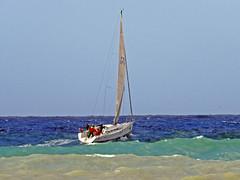 16061701763foce (coundown) Tags: genova mare vento velieri sailingboat ussmasonddg87 ddg87 ussmason mareggiata piloti