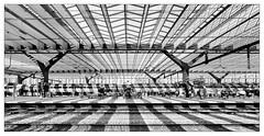 Rotterdam Central Station _ 4 (leo.roos) Tags: spoor tracks railway shadow schaduw pattern patroon solarcells zonnepanelen rotterdam rotterdamcentraalstation rotterdamcentralstation a7rii voigtlanderheliarhyperwide10mmf56 emount cosina cv darosa leoroos voigtlander1056