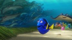 (funtribecorp) Tags: nemo disney pixar animation dory marlin findingnemo ellendegeneres dominicwest eugenelevy dianekeaton albertbrooks lindseycollins edoneill idriselba andrewstanton kaitlinolson pixaranimation tyburrell findingdory