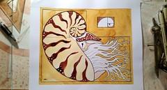 Golden Nautilus (Alberto J. Almarza) Tags: nature geometry nautilus goldenratio sacredgeometry geometricart fractalgeometry drawnbyhand pittsburghart geometricdrawing albertojalmarza albertosblog albertossketchbooks