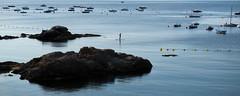 Morning Text (jerryms) Tags: costa beach de seaside spain 5 olympus catalonia catalunya em brava omd begur calella tamariu palafrugell