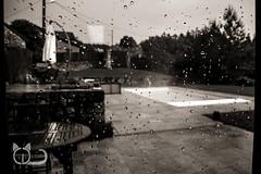 No Pool Today / Pas de Piscine Aujourd'hui (Cl@ire.d) Tags: blackandwhite bw france pool rain outside noiretblanc pluie nb 87 badweather piscine hautevienne dropsofrain 70d mauvaistemps ambazac gouttesdepluie infinitexposure gtedechabanne