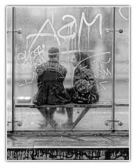 Les bancs publics (Jean-Marie Lison) Tags: brussels blackandwhite bw noiretblanc tag bruxelles nb eos80d