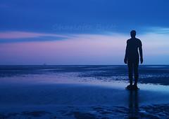 Anthony Gormley at Crosby Beach (charlottebrettphotography) Tags: uk england beach sea seascape sunset art statue gormley anthonygormley merseyside northwestengland crosbybeach crosby