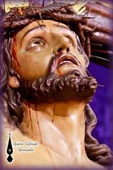 Expiracin Granada Quinario (5) (Guion Cofrade) Tags: santa religion iglesia granada cristo semana imagen jess pasion seor cofrade pasin cofradia devocin costalero besapis