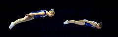 26250187 (roel.ubels) Tags: sport fantastic rotterdam gymnastics ahoy nk turnen 2016 topsport