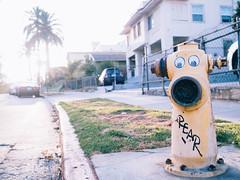 Two Days in Echo Park (shawheen // clockcatcher) Tags: angeles shawheen keyani echopark photography los hydrant fire roadtrip la