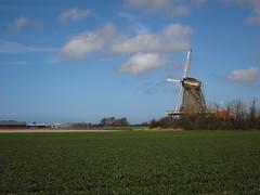 Windmill (Bobcatnorth) Tags: holland netherlands windmill bicycle bicycling cycling north nederland touring molen fiets noord tocht