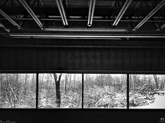 Cold Storage (RichTatum) Tags: trees winter blackandwhite white snow black cold contrast unitedstates michigan rich warehouse grandrapids bnw iphone tatum zondervan blogrodent richtatum iphoneography