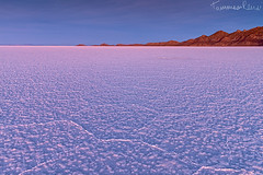 Purple Haze (Tommaso Renzi) Tags: bolivia salar uyuni oruro bolivian salardeuyuni bolivianaltiplano tommasorenzi