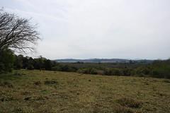 A bela vista da Boa Vista (Vagner Eifler) Tags: brasil portoalegre paisagem riograndedosul morro horizonte lami belavista