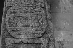 Ojo de Reptil (David Grate) Tags: mxico museo piedra xalapa tuxtlas arqueologa antropologa labrada glifo