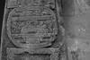Ojo de Reptil (David Gárate) Tags: méxico museo piedra xalapa tuxtlas arqueología antropología labrada glifo