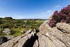 Moorland strewn with rocks and capped in heather (Keith in Exeter) Tags: uk england landscape countryside nationalpark rocks heather explore devon heath granite erica ericaceae moor dartmoor moorland precarious bellheather ericacinerea haynedown copyright©keithbowden2013