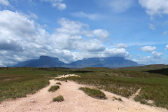 The path to Mount Roraima