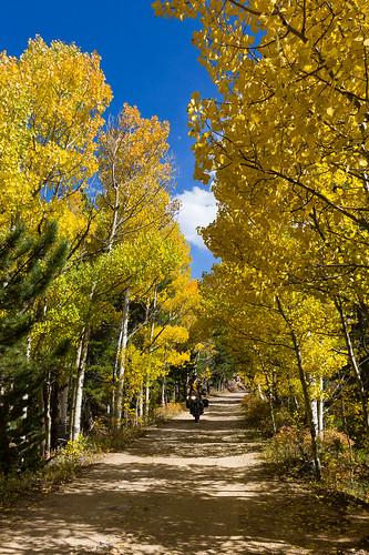 Fall Adventure