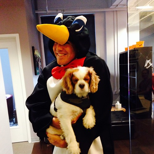 Milo befriends a penguin at #knewton Halloween