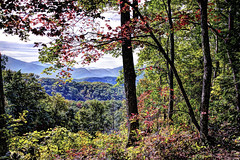 Mountain View (Wes Iversen) Tags: autumn trees mountains nature hdr autumncolor greatsmokymountainsnationalpark hcs nikkor18300mm clichsaturday