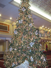 "Christmas Tree at Drury Lane • <a style=""font-size:0.8em;"" href=""http://www.flickr.com/photos/109120354@N07/11569914046/"" target=""_blank"">View on Flickr</a>"