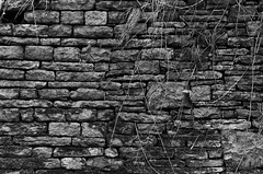wall. the story of my life so far. (sami dale) Tags: white black texture stone wall grunge hard gritty metaphor harsh rugid ruuged