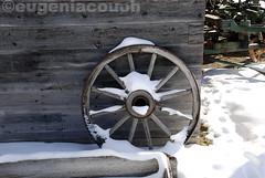 coleccion winter 2013 (Eugenia Couoh) Tags: city blue cold wheel thecity blues invierno snowfall twiggs feelings nevado melancolia winterblues vision:outdoor=0913 vision:car=055