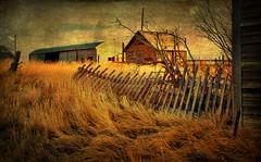 Galata Montana (Pattys-photos) Tags: old house barn fence montana galata