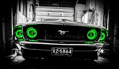 Seeing Green (tysorget) Tags: green classic ford 1969 automotive mustang mach1 haloheadlights uploaded:by=flickrmobile flickriosapp:filter=nofilter tylersorgetphotography