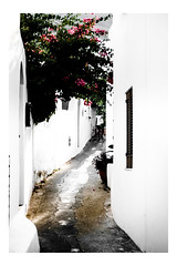 DSCF1435 (Andrea Scire') Tags: street windows light white colour shadows place andrea culture beautifull aeolianislands isoleeolie scir andreascire andreascir phandreascire