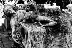 _MG_0066 (Krystiano2280) Tags: blackandwhite italy milan art beautiful italia milano blacknwhite cimitero monumentale bestshot bestpic bestshotoftheday begreat bestpicoftheday
