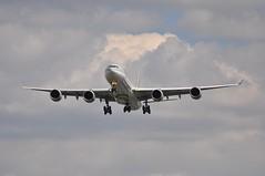 [13:18] QR0003 DOH-LHR (A380spotter) Tags: london heathrow landing finals airbus arrival approach qr lhr a340 qatar qatarairways qtr egll  27l runway27l shortfinals a7agd dohlhr 600hgw rasabuaboud qr0003