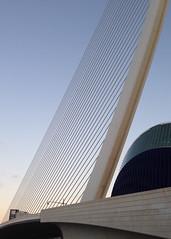 El Pont de l'Assut de l'Or (Valencia) (Adrian Lazar) Tags: valencia spain europe flickr wordpress westerneurope ciudaddelasartesylasciencias cityofartsandsciences ciutatdelesartsilescincies valenciancommunity checkedoffthelist pontdelassutdelor puentedelassutdelor lgora assutdelorbridge