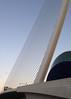 El Pont de l'Assut de l'Or (Valencia) (Adrian Lazar) Tags: valencia spain europe flickr wordpress westerneurope ciudaddelasartesylasciencias cityofartsandsciences ciutatdelesartsilesciències valenciancommunity checkedoffthelist pontdelassutdelor puentedelassutdelor làgora assutdelorbridge