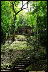 Yaxchiln Chiapas (paco18pd) Tags: travel naturaleza mexico nikon maya selva chiapas mayas usumacinta yaxchilan jungla selvalacandona lacandones d7100 sigma1750