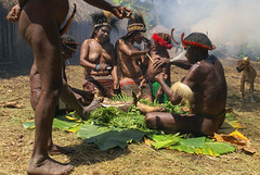 family business in the baliem valley, west papua (thomas.reissnecker) Tags: west ngc valley papua baliem