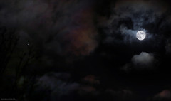 Conjunction (Emil de Jong - Kijklens) Tags: cloud clouds wolken halo planet jupiter wolk maan planeet samenstand conjunctie