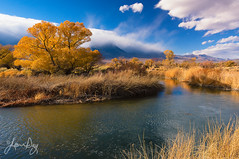 Just Keep Wandering (jeandayphotography.com) Tags: california ca autumn trees usa storm mountains color fall water grass weather clouds reflections river landscape desert riverside owensvalley owensriver easternsierranevada jeanday wwwjeandayphotographycom