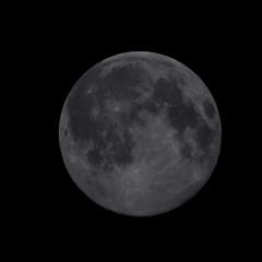 Oggi, 22 maggio, c'è la luna piena e cosi ho tirato fuori l'adattatore per la reflex per fare qualche scatto. #moon #luna #fmount #nikon #30x #750mm #oculare #25mm #15mm #6mm #celestron  #c6 #diametro #150mm  #coma #mari #crateri ~Fraus (francescoclemente2) Tags: moon nikon luna mari 15mm coma celestron c6 6mm 25mm 150mm diametro fmount 30x crateri 750mm oculare
