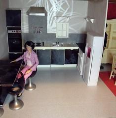 LaurenLand House 6 of 7 (suekulec) Tags: scale kitchen furniture makeover 16 diorama pedigree sindy