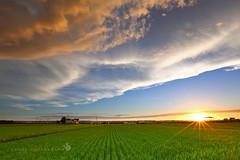 (Landy Kuso) Tags: sunset canon taiwan       5d3 5dmark3